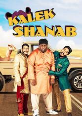 Search netflix Kalek Shanab